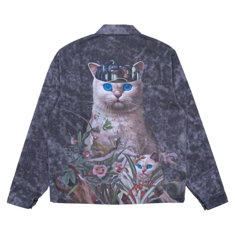 Куртка Ripndip Masterpiece Coach Jacket Grey Mineral Wash