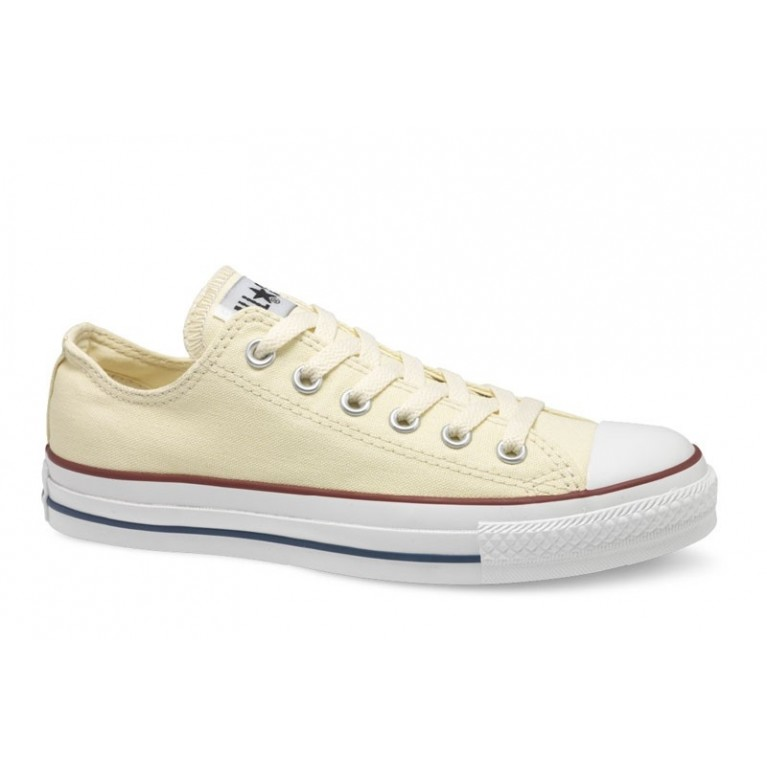 Кеды Converse Chuck Taylor All Star White M9165
